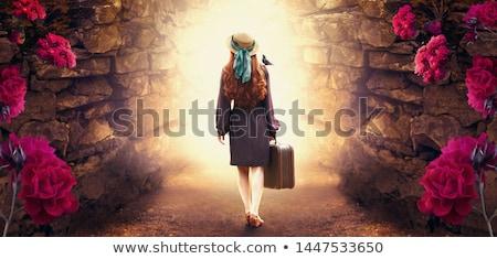 varázslatos · menekülés · fémes · drót · háló · repülés - stock fotó © psychoshadow