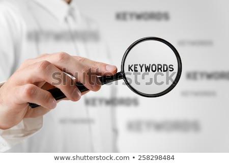Onderzoek analyse business illustratie Stockfoto © tashatuvango