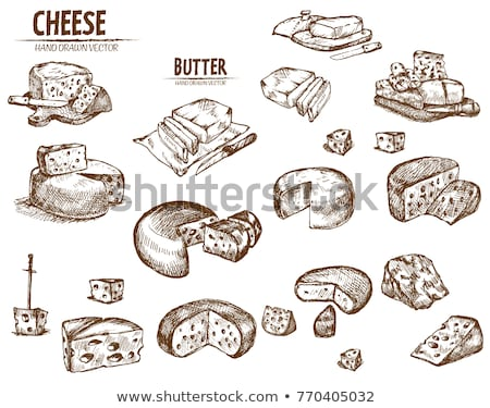 Digital Vector Detailed Line Art Sliced Cheese Stock fotó © FrimuFilms
