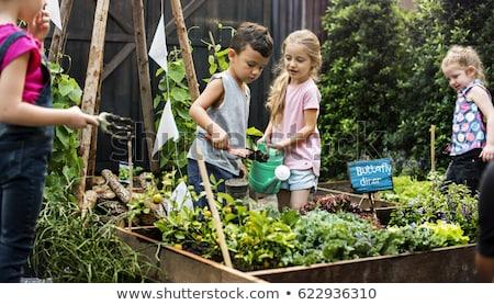 çocuklar bahçe kız portre Avrupa mutluluk Stok fotoğraf © IS2