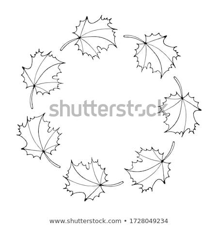 Floral quadro coroa estilizado folhas eco Foto stock © ESSL