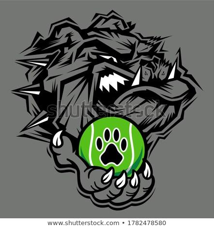 Bulldog kutya tart teniszlabda sportok kabala Stock fotó © Krisdog