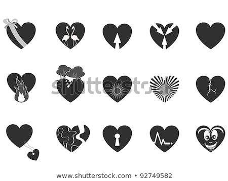 Vektörler ayarlamak siyah kalp Stok fotoğraf © Pravokrugulnik