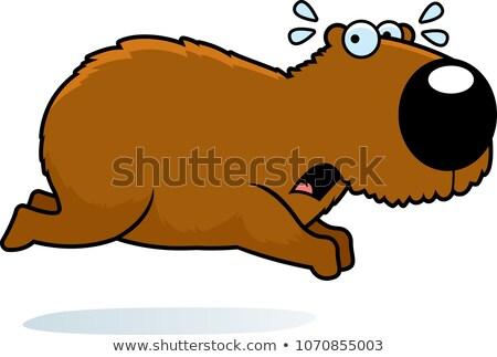 Cartoon Capybara Running Away Stock photo © cthoman