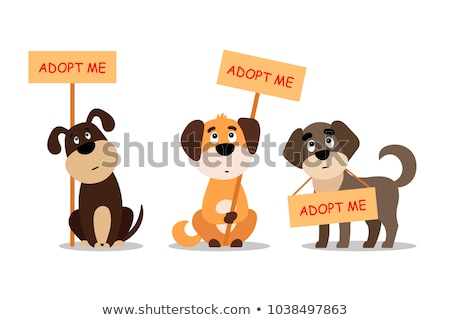 Cartoon Dog Adopt Sign Stock photo © cthoman