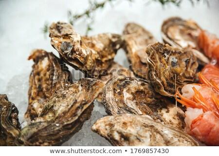 poissons · fruits · de · mer · glace · maquereau · nature · mer - photo stock © dolgachov