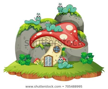 гриб дома четыре Гусеницы иллюстрация природы Сток-фото © colematt