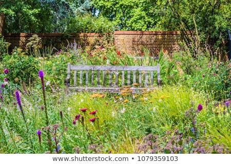 скамейке диких цветов саду квадратный трава Сток-фото © ruslanshramko