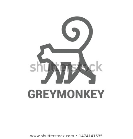 Sign template with monkey and trees Stock photo © colematt