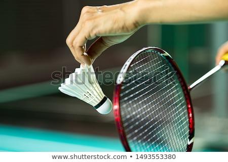 Badminton ilustração dois homens jogar homens diversão Foto stock © colematt