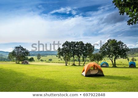 noc · krajobraz · cartoon · ilustracja · Chmura · górskich - zdjęcia stock © bluering