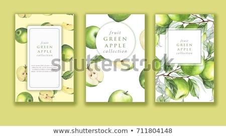 Vert pomme couleur pour aquarelle illustration peinture fruits Photo stock © ConceptCafe