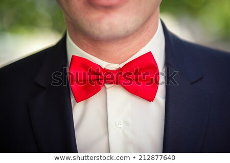 A girl in blue dress with bow-tie isolated on white ストックフォト © Elnur