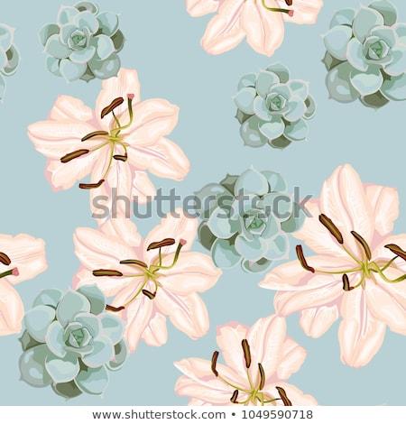 Sin costura rosa Lily wallpaper ilustración textura Foto stock © colematt