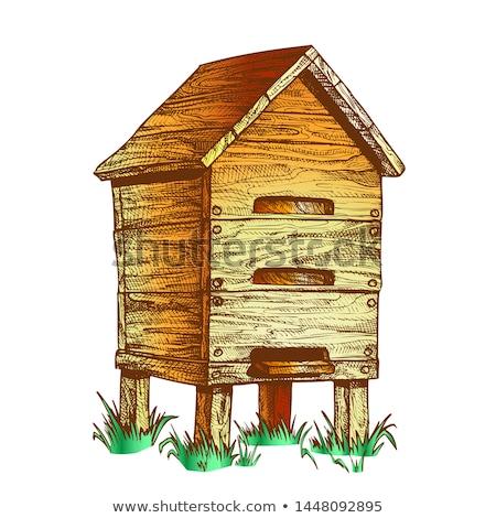 色 木製 蜂の巣 草 ベクトル ヴィンテージ ストックフォト © pikepicture