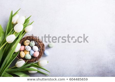 Stok fotoğraf: Paskalya · yumurtası · buket · renkli · asılı · çiçek