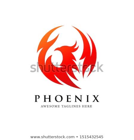 simple phoenix bird circle logo Stock photo © krustovin