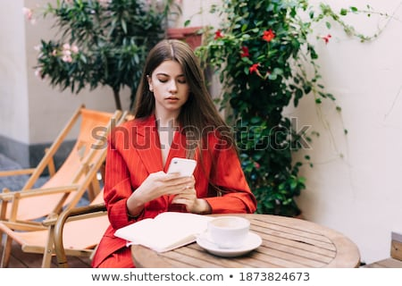 Serious businesswoman concentrating on network while sitting by laptop Stock photo © pressmaster