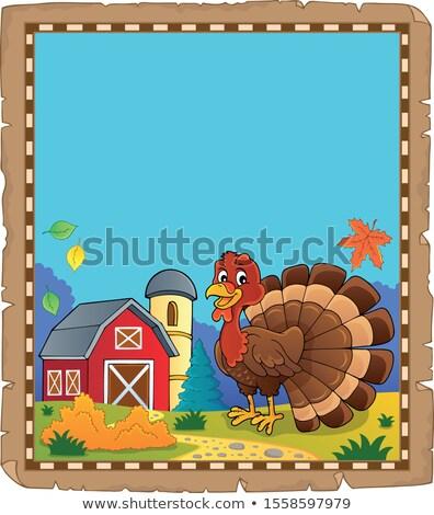 Törökország madár pergamen papír levél művészet Stock fotó © clairev