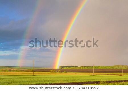 Regen verdubbelen regenboog bos wolken aarde Stockfoto © Olena