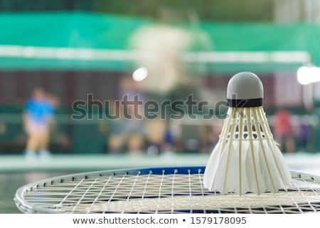 Badminton player in fast motion on a badminton court Stock photo © lightpoet