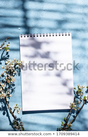 Empty notebook with shadow of a blooming tree Stock photo © furmanphoto