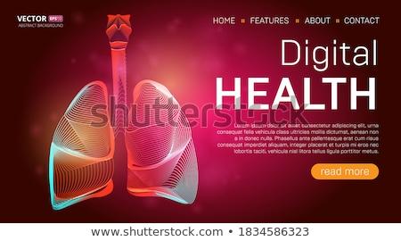 Test leszállás oldal műanyag sebészek ceruza Stock fotó © RAStudio