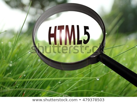 HTMl5 Magnifying Glass Stock photo © kbuntu
