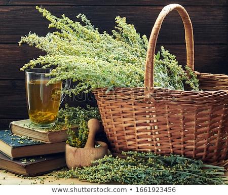 SageBrush in Bloom Stock photo © mpetersheim