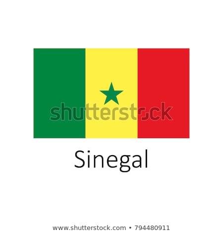 Senegal bandiera icona isolato bianco sfondo Foto d'archivio © zeffss