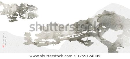 Montanhas alto planalto tibete luz viajar Foto stock © THP
