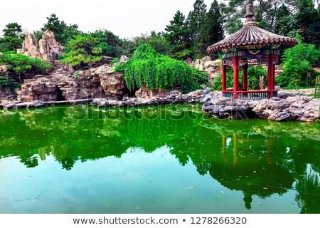park · gyakorol · tai · chi · templom · nap · tavacska - stock fotó © billperry
