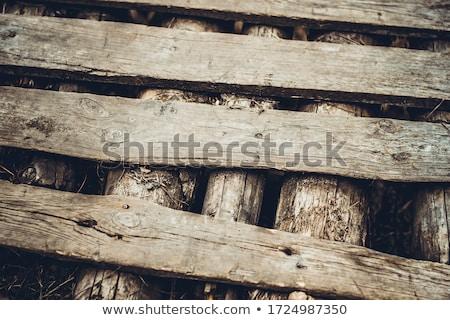 Közelkép szürke fából készült kerítés textúra fa Stock fotó © oly5