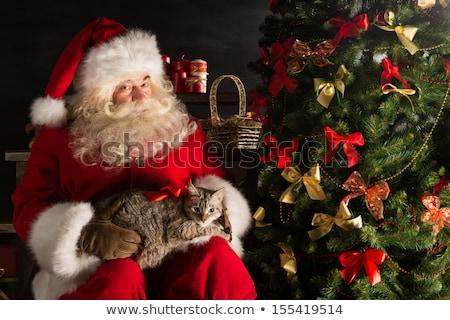 Mikulás készít keresett ajándék gyermek macska Stock fotó © HASLOO