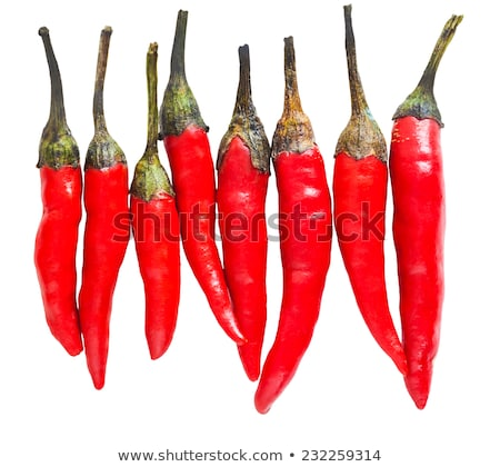 chili pods laid in a row  Stock photo © OleksandrO