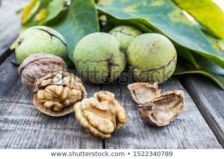 dried whole tree nuts close up stock photo © oleksandro