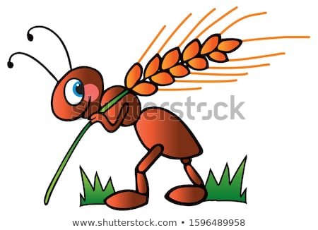 desenho · animado · sorridente · formiga · feliz · natureza · arte - foto stock © derocz