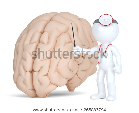 doctor pointingat human brain medical illustration isolated contains clippin path stock photo © kirill_m