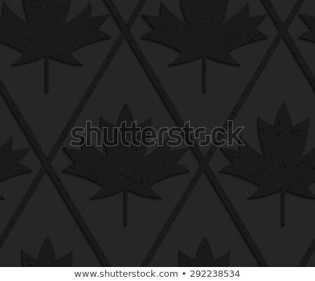 Negro plástico sólido arce hojas Foto stock © Zebra-Finch