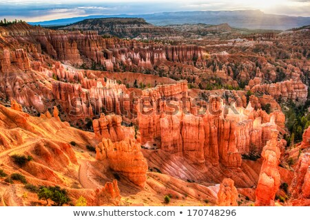 Sunrise Thor's Hammer Sunset Point Hoodoos Bryce Canyon National Stock photo © billperry