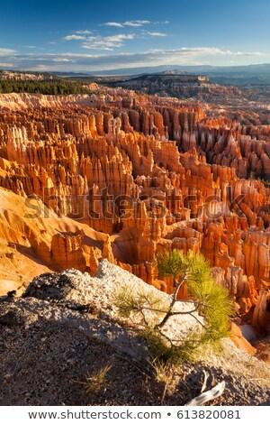 Hoodoos Fairyland Bryce Canyon National Park Utah  Stock photo © billperry