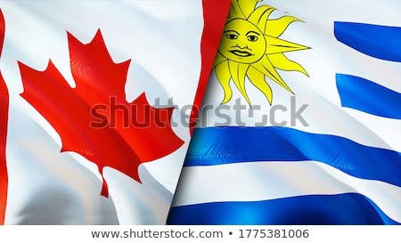 Canadá Uruguai bandeiras quebra-cabeça isolado branco Foto stock © Istanbul2009