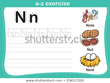 Flashcard letter N is for nut Stock photo © bluering