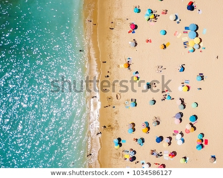Sunbathe on the shoreline Stock photo © alphaspirit