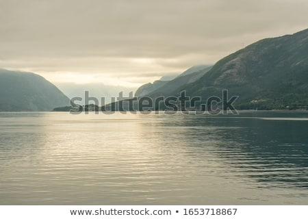 Przeciwmgielne kanał charakter ocean zielone Zdjęcia stock © wildnerdpix