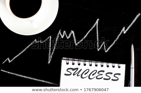 Success Scheme text on school board Stock photo © fuzzbones0