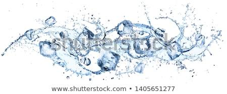 Kék jégkocka izolált fehér víz étel Stock fotó © Cipariss