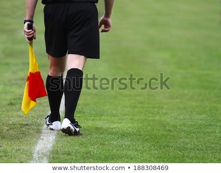 Voetbal officieel lijn rechter sport sport Stockfoto © njnightsky