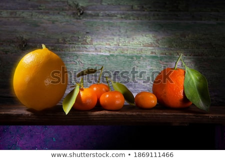 two tangerines with dry leaves stock photo © Digifoodstock