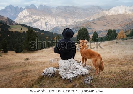Man sitting on mountain peak Stock photo © IS2
